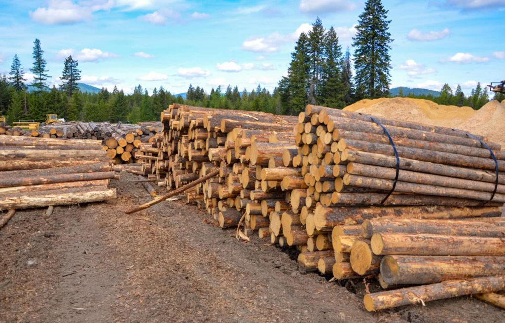 Log in queue at North Idaho Post & Pole