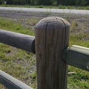 domed fence top