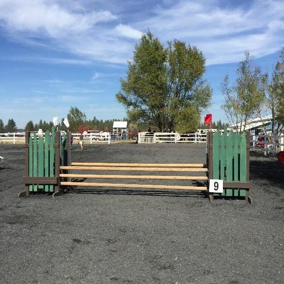 horse wood jump rails in use
