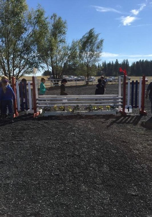 lodgepole pine jump rails in use for horses